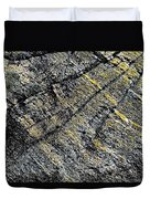 History Of Earth 5 Duvet Cover