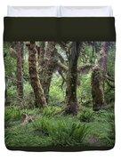 Hoh Rain Forest 3371 Duvet Cover