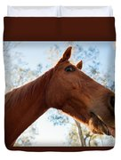 Horse In The Paddock Duvet Cover