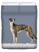Hungarian Greyhound Duvet Cover
