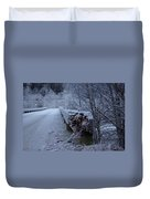 Ice Bridge Duvet Cover
