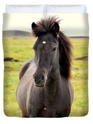 Icelandic Horse Duvet Cover by Ambika Jhunjhunwala