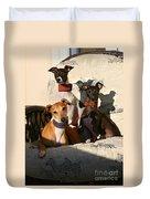 Italian Greyhounds Duvet Cover