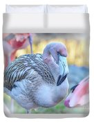 Juvenile Flamingo Duvet Cover