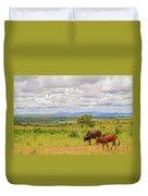Landscape In Malawi Duvet Cover