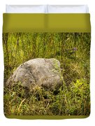 Large Rock And Purple Asters Duvet Cover