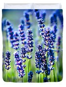 Lavander Flowers In Lavender Field Duvet Cover