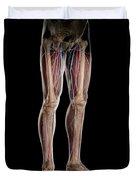 Leg Blood Supply Duvet Cover