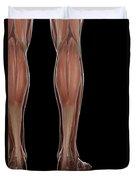 Leg Musculature Duvet Cover
