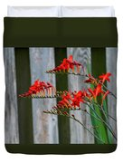Lucifer Crocosmia By Fence Duvet Cover