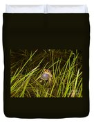 Male Toad Duvet Cover