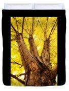 Maple Tree Portrait 2 Duvet Cover