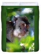 Mauritian Cynomolgus Macaques In The Wild Duvet Cover