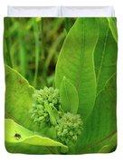 Milkweed Flower Buds  Duvet Cover