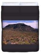 Mojave National Preserve Duvet Cover