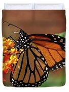 Monarch On Milkweed Duvet Cover