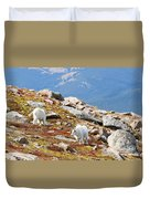 Mountain Goats On Mount Bierstadt In The Arapahoe National Forest Duvet Cover