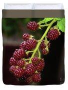My Blackberries Duvet Cover