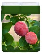 Natal Plums On Branch Duvet Cover