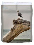Gull On Driftwood Duvet Cover