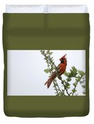 Northern Cardinal Portrait Duvet Cover