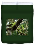 Office Art Forest Ferns Green Fern Giclee Prints Baslee Troutman Duvet Cover