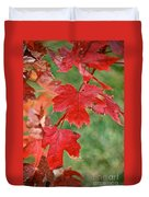 Ohio Autumn1 Duvet Cover
