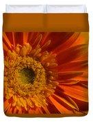 Orange Gerbera Daisy Duvet Cover
