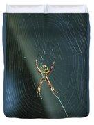 Orb Weaver Spider And Web Duvet Cover