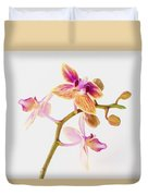 Orchid Study Duvet Cover