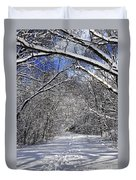 Path In Winter Forest Duvet Cover