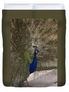 Peacock Close-up Duvet Cover