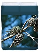 Pine Cones On Dry Branch Duvet Cover