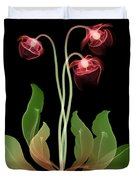 Pitcher Plant Flowers, X-ray Duvet Cover