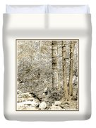 Pocono Mountain Stream, Pennsylvania, Digital Art Duvet Cover