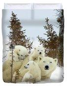Polar Bear Ursus Maritimus Trio Duvet Cover