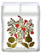 Pomegranate, 1613 Duvet Cover