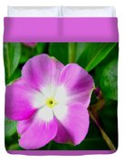 Purple Periwinkle Flower 1 Duvet Cover