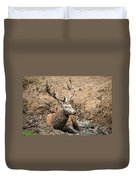 Red Deer Stag Cervus Elaphus Takes A Mudbath To Cool Down On Aut Duvet Cover