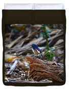 Red-flanked Bluetail 2 Duvet Cover