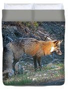 Red Fox Duvet Cover