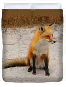 Red Fox 3 Duvet Cover