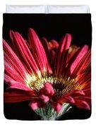 Red Gerbera 1 Duvet Cover