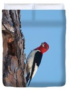 Red Headed Woodpecker Duvet Cover