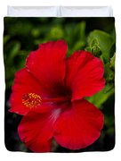 Red Hibiscus - Kauai Duvet Cover