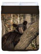 Resting Bear Duvet Cover