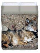 Resting Wolf Duvet Cover