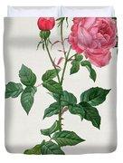 Rosa Indica Duvet Cover