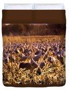 Sandhills In The Corn Duvet Cover