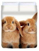 Sandy Lop Rabbits Duvet Cover